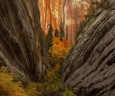 Canyon Convergence, Utah. by KNikolaev with a Canon EOS 50D