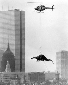 Доставка статуи бронтозавра в музей науки. 1984г. Бостон. США