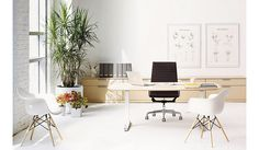 Renew™ Executive Sit-to-Stand Desk - Design Within Reach