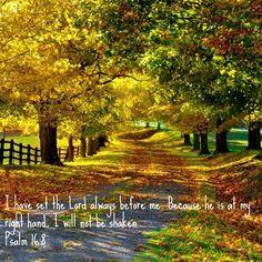 Ps. 16:8