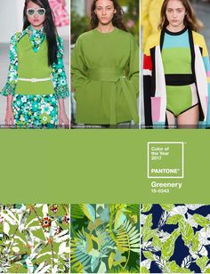 Pantone Colour of the Year 2017 - Greenery | Patternbank