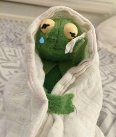 Kermit The Frog Crying Meme, New Memes, Funny Memes, Meme Meme, Laughing Funny, Memes Lindos, Crying Meme, Cute Love Memes, Mood Pics, Cartoon Memes