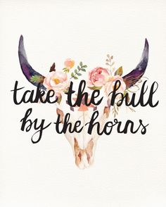 Take the Bull By the Horns.