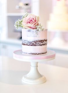 Wedding & Special Event Cakes, Desserts & More! Pretty Cakes, Beautiful Cakes, Amazing Cakes, Fancy Cakes, Mini Cakes, Cupcake Cakes, Wedding Cake Designs, Wedding Cakes, Nake Cake