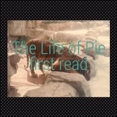 "life of pi story of keesh Survival essay christopher in the ""life of pi"" by yann martel in these two stories pi and keesh both use survival skills to survive in their extreme."