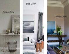 Gray has three undertones: blue, green or purple. Muted blues are tricky for walls because people often get them confused between greeny grays and blue grays. A gray that 'reads' like a neutral gray on the walls is a greeny gray. If you want blue walls, select a blue gray so that you don't end up with baby blue.