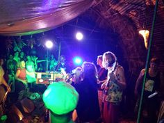 Tangled_Roots_Moloaa_Organica_2015_1_15 band