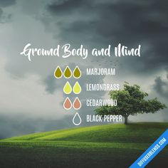 Ground Body and Mind - Essential Oil Diffuser Blend Grounding Essential Oil, Essential Oil Diffuser Blends, Making Essential Oils, Young Living Essential Oils, Doterra, Liquid Castile Soap, Diffuser Recipes, Fractionated Coconut Oil, Nature