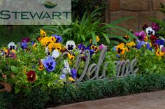 At Stewart Land Designs we specialize in the design and installation of custom pools, irrigation, lighting, pavers, retaining walls and water features. Custom Pools, Water Features, Don't Forget, Houston, Backyard, Inspired, Create, Garden, Wall