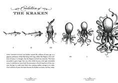 The Kraken Black Spiced Rum Site