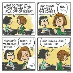 Marcie and Peppermint Patty Snoopy Cartoon, Snoopy Comics, Peanuts Cartoon, Peanuts Snoopy, Cartoon Pics, Peanuts Comics, Comics In English, English Class, Comic Art