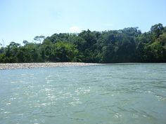 Río Napo | Flickr: Intercambio de fotos