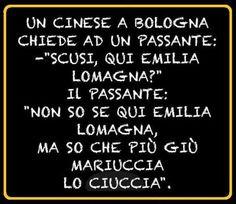 un cinese a bologna - 13082