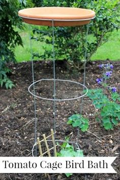 Easy Outdoor Projects Tomato Cage Bird Bath and other great ideas that are for the birds!D The post Easy Outdoor Projects appeared first on Outdoor Diy. Garden Crafts, Garden Projects, Garden Art, Easy Garden, Tomato Cages, How To Attract Birds, Tomato Garden, The Ranch, Outdoor Projects