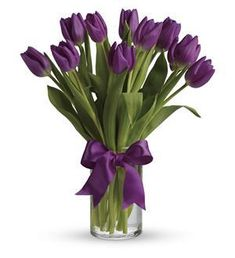 These are by far my favorite flowers in all of the world! And not to mention these are in my favorite color!