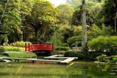 jardim-japones-decoracao