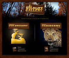 Wholesale Fur Dressing & Custom Taxidermy Studio