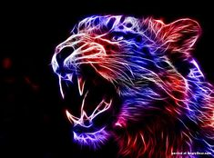 eletric animal wallpaper | Electric animals by Canadian artist minimoo64, Photoshop animals