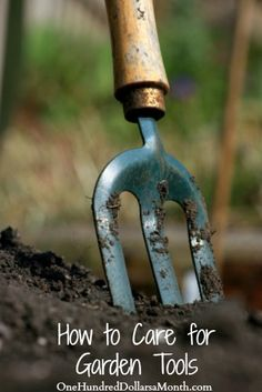 After planting your fall bulbs, here are some great suggestions on how to care for your garden tools before storing them for the winter.