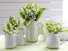 Flowers & white pitchers...my  new favorite thing