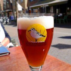 Schroemrakker Brandaan #beer of #Terschelling.  #bier #netherlands #nederland #waddenislands http://ift.tt/2ovRwWs