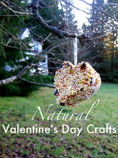 Natural Valentine's Day - heart bird feeders and all natural gummies you can make at home!