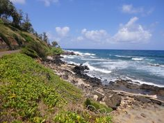 Haven't posted a Kauai photo in a while and with the gray days here in Southern California, it's high time we got a little virtual fun in the sun. Here's a Kauai picture from the walking path just North of Kealia Beach. Terry Ambrose  Author of Photo Finish - Hawaii, mystery, and trouble in paradise that never looked so good at http://terryambrose.com/photo-finish/