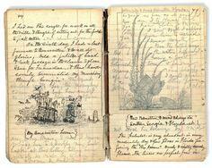Quaderno del naturalista John Muir dei viaggi in Alaska nel 1879