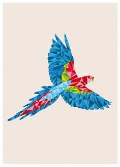 Diseño Emergente | animal geometric