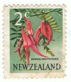 Picture of NEW ZEALAND - CIRCA A stamp printed in New Zealand shows Kowhai Ngutu-kaka or Kaka Beak - Clianthus puniceus are small, woody legume trees in the genus Sophora, circa 1967 stock photo, images and stock photography. Hindu Culture, Kiwiana, Stamp Printing, Reptiles And Amphibians, Vintage Artwork, Stamp Collecting, Old Toys, Postage Stamps, New Zealand