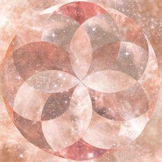 Digital Art - Sacred Geometric Flower by Lori Menna Tree Of Life Artwork, Tree Of Life Painting, Geometric Flower, Flower Mandala, Sacred Geometry Art, Geometry Tattoo, Spiritual Photos, Mystique, Images Wallpaper
