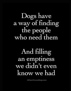 Dogs have a way of finding the people who need them and filling an emptiness we didn't even know we had This dog quotes poster is available here at Rover99.com