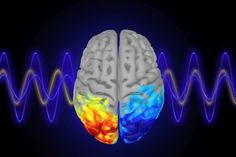 Summary: Attention can be boosted by using neurofeedback to increase alpha brainwaves. MIT neuroscientists may have a solution for you: Turn down you Visual Cortex, Research Scientist, Brain Training Games, Brain Science, Brain Waves, Brain Activities, Sensory Processing, Neurons, Psychiatry
