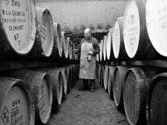 An Employee of the Knockando Whisky Distillery in Scotland