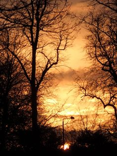 Sunrise over Wollaton Park, Derby Road Entrance
