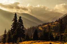 morning in the Godeanu mountains, Romania Mountain Hiking, Romania, Trekking, Landscapes, Places To Visit, Spaces, Mountains, Beautiful, Paisajes