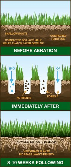 Aeration info graphic