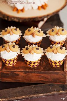 owl cupcakes made with vanilla icing, mini vanilla wafers, chocolate chips, almond slices and cashews.