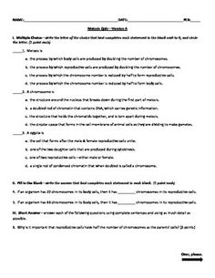 Cellular Organization Worksheet  Venn Diagrams Worksheets And