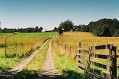 country road / take me home