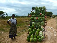 Watermelons for sale, roadside sellar in Malawi - always support them if you can! - by Vera Cheal