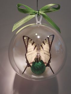 """Papilio agetes""  from Chile  In the tiger swallow tail family.  100 mm clear ornament  $20.00 US"