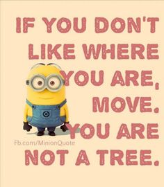Find images and videos about funny, lol and minions on We Heart It - the app to get lost in what you love. Minion Jokes, Minions Quotes, Funny Minion, Minion Sayings, Minion Pictures, Funny Pictures, Motivational Quotes, Inspirational Quotes, Minions Love