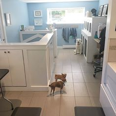 Home-based Pet Grooming Salon | FB@tidytailsdoggrooming | EMAIL.tidytailsvictoriabc@gmail.com & Grooming Salon front entry | Doggie Dou0027s! | Pinterest | Front entry ...