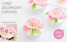 Cupcakes a Diario - Cupcakes a Diario
