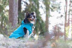 Rukka Raincoats, overalls, fleecewear, and knitwear for dogs Pet Clothes, Doggies, Raincoat, Spring Summer, Pets, Little Puppies, Rain Jacket, Dogs