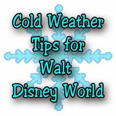 Tips for when the weather is super cold at Walt Disney World