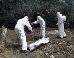 The CDC Admits the USA Is On the Verge of a Major Ebola Outbreak