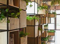 Un'oasi di piante e bambù per un caffetteria a Pechino - LifeGate