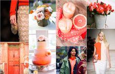 Grapefruit-summer colors